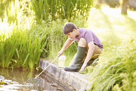 Boy Fishing In Pond With Net And Jar Stock Photo