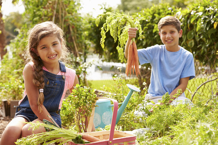 self sufficient: Two Children Working On Allotment Together