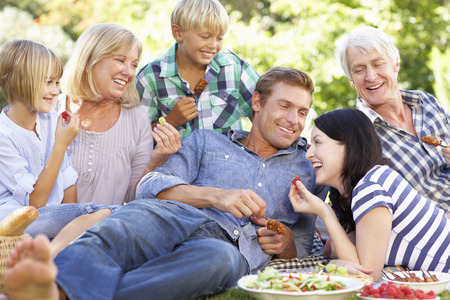multi generation family: Family with picnic in park Stock Photo