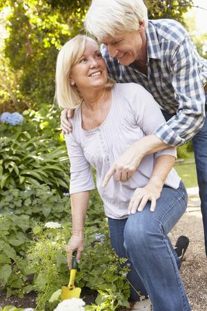 Senior couple gardening photo