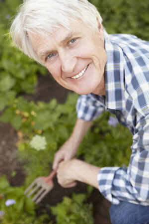 mid age: Mid age man gardening Stock Photo