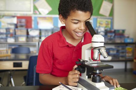 顕微鏡を用いた理科授業における少年