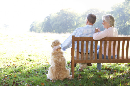 quality time: Senior couple outdoors with dog Stock Photo