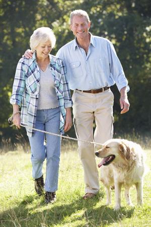 persona cammina: Anziano, coppia dog walking