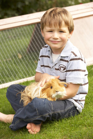 long haired: Young boy in garden holding guinea pig