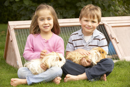 wallingford: Young boy and girl in garden holding guinea pigs