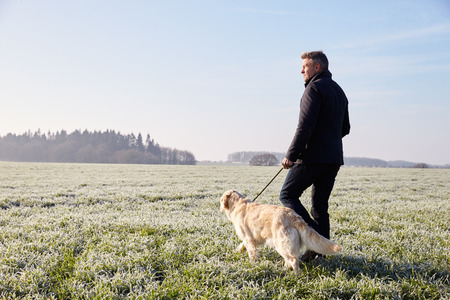 Äldre Man Walking hund i Frosty Landskap Stockfoto