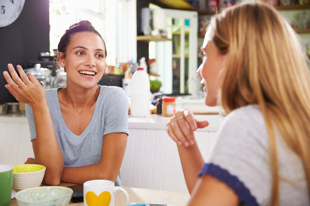 dos personas hablando: Dos amigos femeninos que gozan del desayuno en el pa�s junto