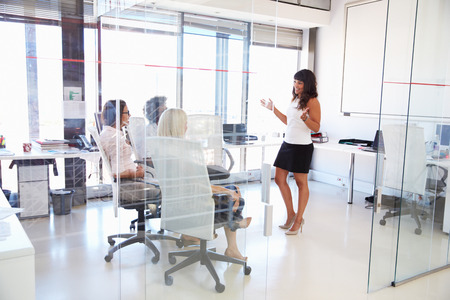 back training: Businesswoman presenting meeting in an office Stock Photo
