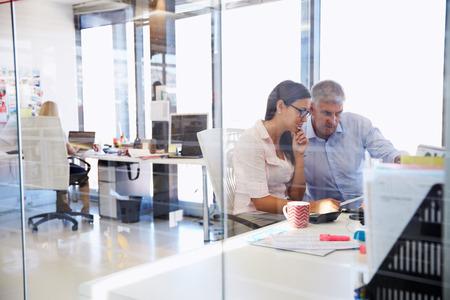 함께 일하는 사무실 동료