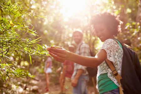 여자는 시골 산책하는 동안 공장에서 잎을 검사