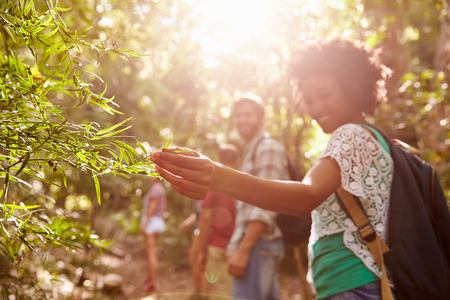 paisaje rural: Mujer Examinar Hojas En La Planta Durante Campo Caminata Foto de archivo