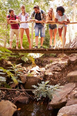 people having fun: Group Of Friends On Walk Crossing Wooden Bridge In Forest Stock Photo