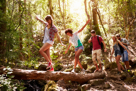 group: Group Of Friends On Walk Balancing On Tree Trunk In Forest Stock Photo