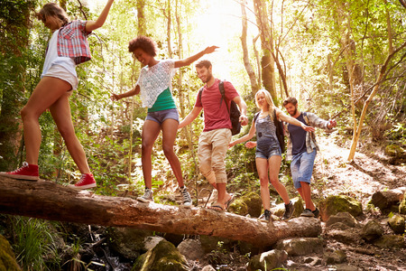 friends happy: Group Of Friends On Walk Balancing On Tree Trunk In Forest Stock Photo