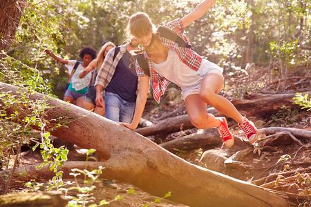 amigos: Grupo de amigos que salta sobre Troncos En Campo Caminata Foto de archivo