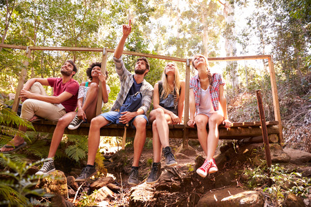 group of friends: Group Of Friends On Walk Sitting On Wooden Bridge In Forest