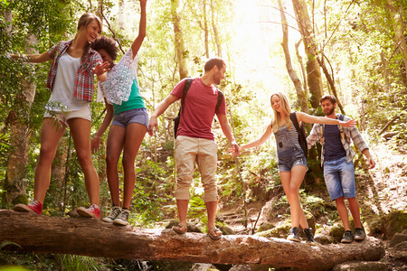 Group Of Friends On Walk Balancing On Tree Trunk In Forest Banco de Imagens