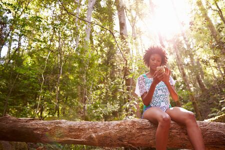 celulas humanas: Mujer se sienta en el tronco de �rbol en bosque usando el tel�fono m�vil Foto de archivo
