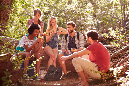 taking a break: Group Of Friends Breaking For Lunch On Countryside Walk Stock Photo