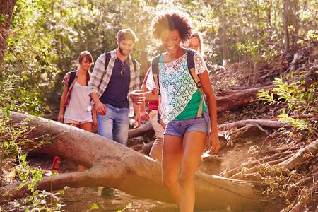 personas saltando: Grupo de amigos que salta sobre Troncos En Campo Caminata Foto de archivo