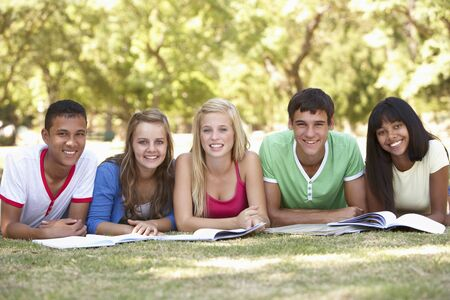 revision book: Group Of Teenage Friends Studying In Park