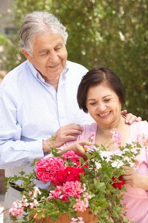 tidying: Senior Hispanic Couple Working In Garden Tidying Pots