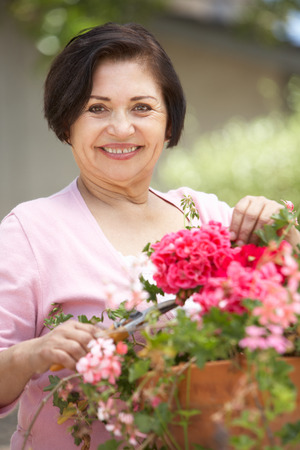 Senior Hispanic Woman Working In Garden Tidying Pots
