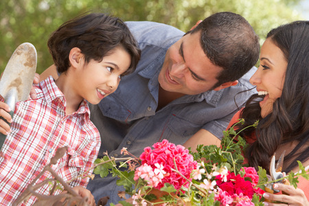 tidying: Hispanic Family Working In Garden Tidying Pots Stock Photo