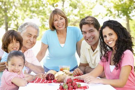 three generation: Three Generation Hispanic Couple Enjoying Picnic In Park