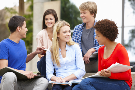 mixed race girl: Multi racial student group sitting outdoors