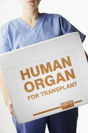 transplant: Female surgeon carrying transplant organ box