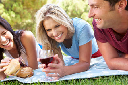 picnic blanket: Group Of Friends Enjoying Picnic Together