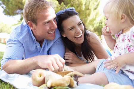 family with baby: Family Enjoying Picnic Together