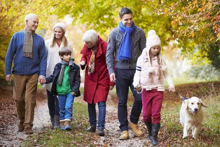 abuelos: Familia de la generación Multl recorre a lo largo la trayectoria del otoño con el perro Foto de archivo
