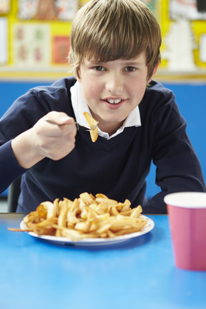 pupil: Male Pupil Eating Unhealthy School Lunch