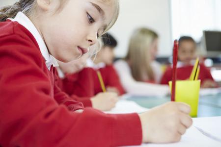 escuela primaria: Mujer Primaria Alumno Trabaja En El Escritorio
