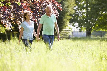 ao ar livre: Pares sênior que andam no campo do verão Imagens