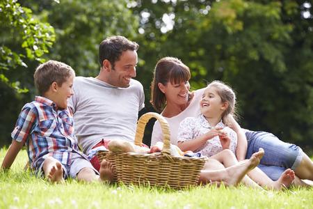 family grass: Family Enjoying Summer Picnic In Countryside
