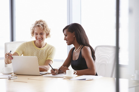 two persons: Two Businesswomen Working Together On Laptop In Boardroom