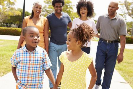 Famille multi-générations Walking In Park Ensemble Banque d'images - 42311765