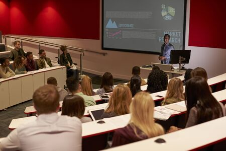 lecturing: Young adult students at a university lecture, back view Stock Photo