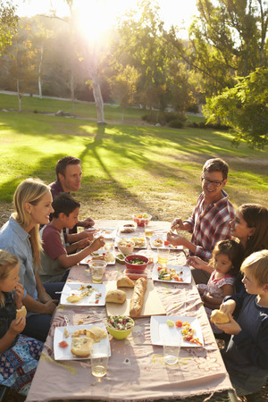 aged: Two families having picnic at a table in a park, vertical