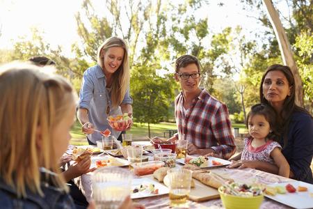 family: Duas famílias que têm um piquenique em um parque, mulher servindo Banco de Imagens