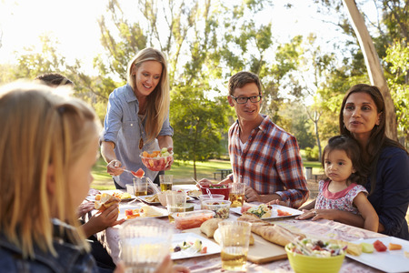 Two families having a picnic in a park, woman serving. Stock Photo