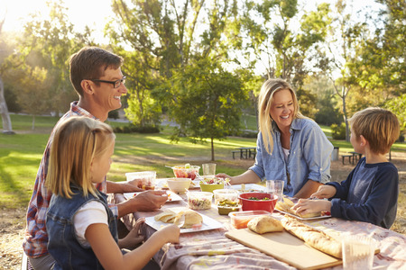 family in park: Young white family enjoying a picnic at a table in a park Stock Photo