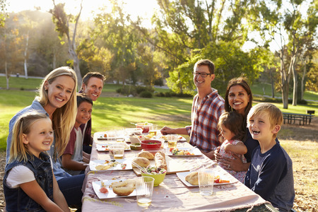 Two families having a picnic at a table look to camera photo