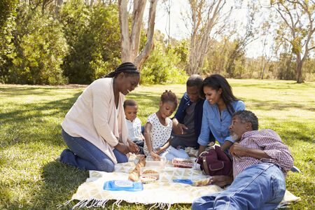 Multi Generation Family Enjoying Picnic In Park Together
