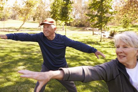 수석 커플 공원에서 함께 태극권 운동을하고 스톡 콘텐츠