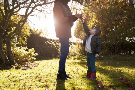 Boy And Mother Playing With Autumn Leaves in Garden Stock Photo